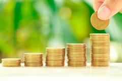 硬币收集 免版税库存图片