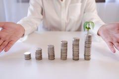 硬币硬币堆行的增长的植物财务和开户的概念 库存图片