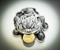硬币青蛙金货币 免版税图库摄影