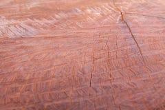 硬木是被削减的美好的样式 库存照片