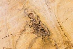 硬木纹理的特写镜头自然没有漆的被打结的木样式与镇压的 设计和装饰的背景 库存照片