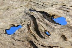 硬木背景和纹理-时间沙子  库存图片