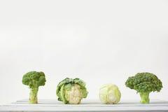 硬花甘蓝和花椰菜白色背景 库存照片