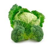硬花甘蓝圆白菜查出成熟开胃菜白色 库存图片