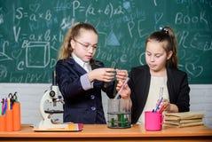 确信的医学专家 女孩在学校实验室 正式学校教育 一点科学家与显微镜一起使用 图库摄影