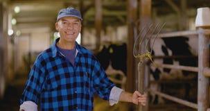 确信的成熟男性农夫藏品干草叉在槽枥 股票视频
