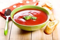 碗与蓬蒿的蕃茄汤 库存图片