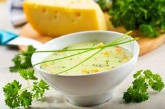 碗乳酪奶油汤 免版税图库摄影