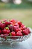 碗充满新鲜的红色草莓 库存图片