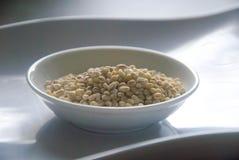碗在白色板材的有机大麦米 免版税图库摄影