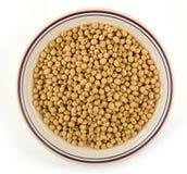 碗在白色的大豆种子 免版税库存图片