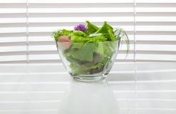 碗在窗口前面的绿色饮食沙拉 免版税库存照片