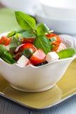 碗希脂乳橄榄沙拉蔬菜 免版税库存图片