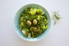 碗新鲜的叶茂盛蔬菜沙拉用橄榄、莳萝、葱和辣椒粉 免版税库存照片