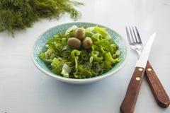 碗新鲜的叶茂盛蔬菜沙拉用橄榄、莳萝、葱和辣椒粉 免版税库存图片
