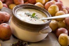 碗新鲜的土豆汤 免版税图库摄影