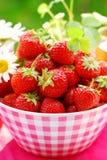 碗新鲜的草莓 免版税库存照片