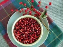 碗新鲜的贵重石榴种子 图库摄影