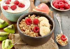 碗格兰诺拉麦片用果子和莓果健康早餐 库存照片