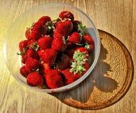 碗水多的草莓 免版税图库摄影