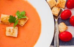 碗汤蕃茄蔬菜 免版税库存照片