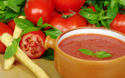 碗汤蕃茄 图库摄影