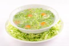 碗热的开胃菜圆白菜汤 图库摄影