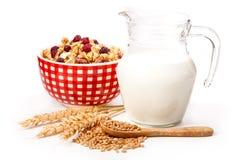碗燕麦剥落和新鲜的牛奶 图库摄影