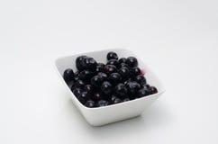 碗用蓝色莓果 库存照片