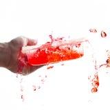 碗红色飞溅的水 免版税图库摄影