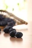 碗蓝莓 免版税库存图片