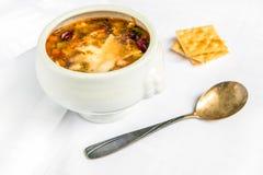 碗蔬菜通心粉汤汤用在白色背景的巴马干酪 免版税库存照片