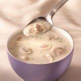 碗蘑菇汤 免版税库存图片