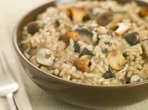 碗通配蘑菇的意大利煨饭 免版税库存照片