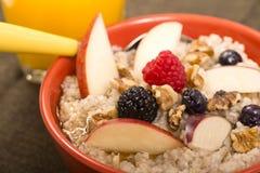 碗钢切了燕麦供食用新鲜水果和蜂蜜 免版税库存照片