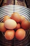 碗鸡蛋 库存图片