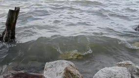碰撞在岩石的波浪 股票录像