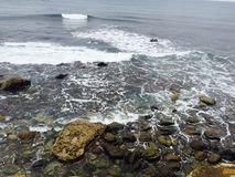 碰撞在岩石的海波浪 库存照片