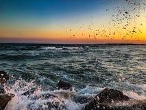 碰撞在岸的波浪 免版税库存图片