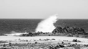 碰撞在石头,阿鲁巴的波浪 Arikok公园 图库摄影
