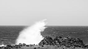碰撞在石头,阿鲁巴的波浪 Arikok公园 免版税库存照片