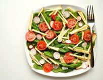 碱性,健康食物: 菠菜、苹果和蕃茄沙拉 免版税库存照片