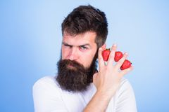 碳水化合物含量草莓 新陈代谢的疾病 糖水平的草莓最安全的果子 人胡子行家 库存照片