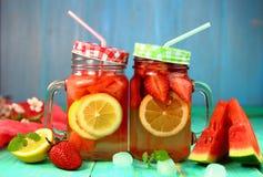 碳酸化合的莓果柑橘柠檬水 库存图片