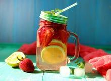 碳酸化合的莓果柑橘柠檬水 免版税库存图片