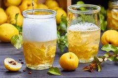 碳酸化合的饮料用日本柑橘糖浆在新鲜水果背景的 免版税库存照片