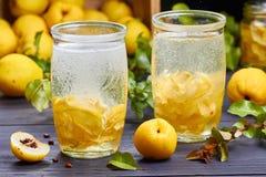 碳酸化合的饮料用日本柑橘糖浆在新鲜水果背景的 免版税库存图片