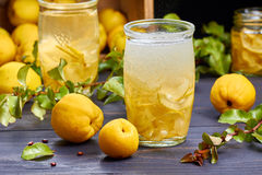碳酸化合的饮料用日本柑橘糖浆在新鲜水果背景的 库存照片