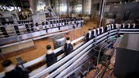 碳酸化合的饮料的生产的自动化的现代传动机 股票视频