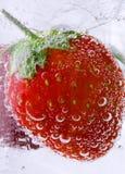 碳酸钠草莓 库存照片
